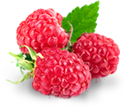 British Nutritions – Raspberry Ketone source
